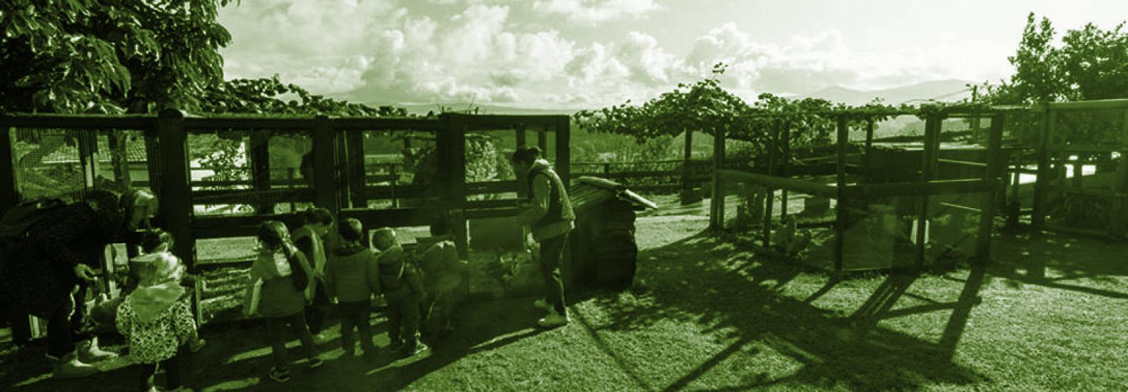 Proxecto transfronteirizo Cerveira-Tomiño